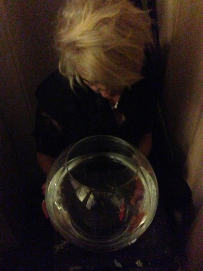 crystal fish bowl
